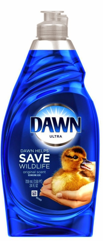 dawn2bhelps2bsave2bwildlife